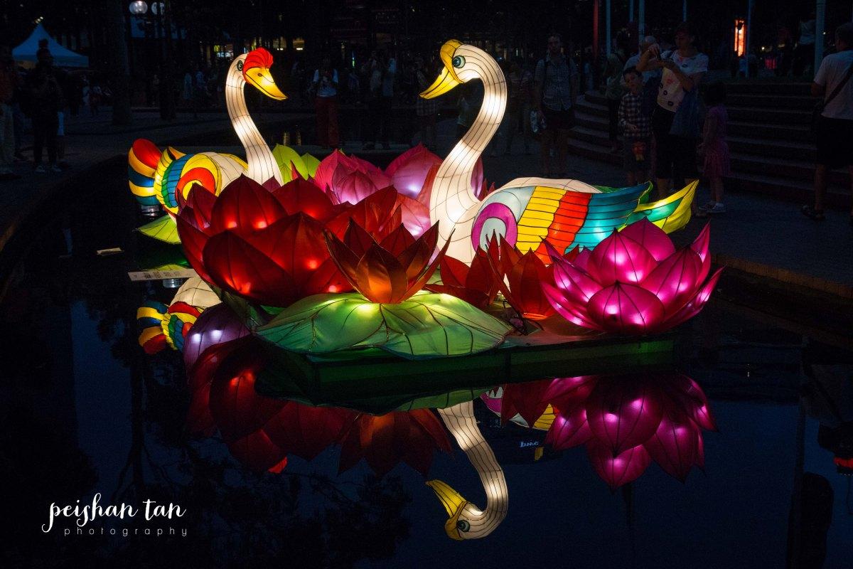 Sydney February 21 2015 Lunar New Year-4