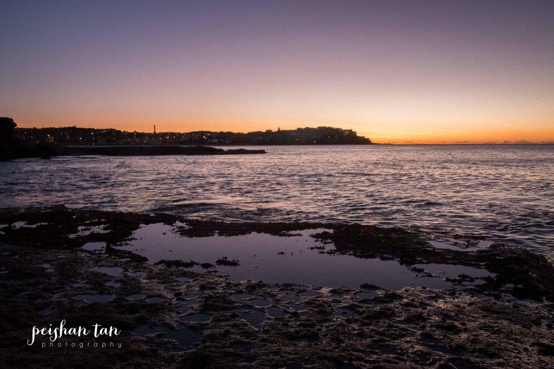 Bondi Beach Sunrise-1