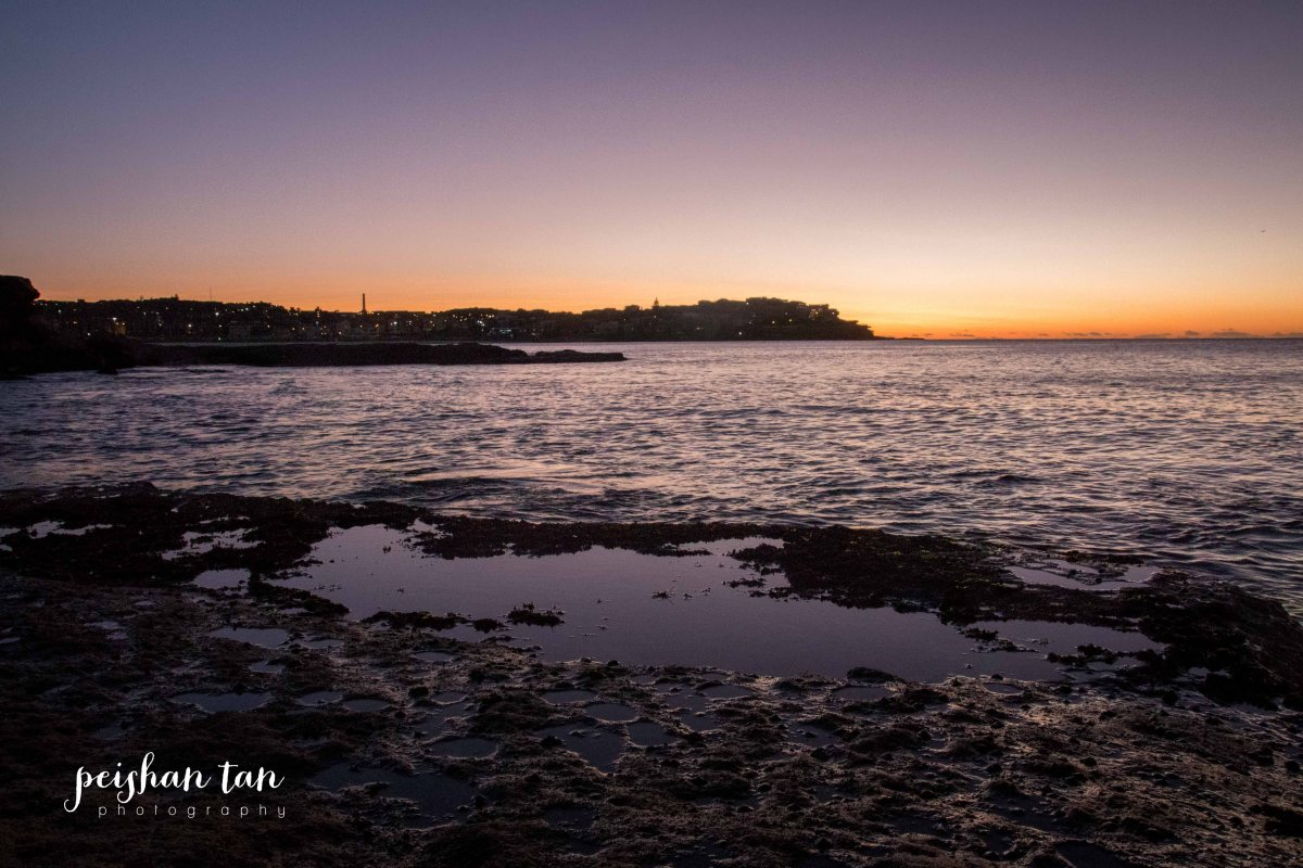 Bondi Beach Sunrise-1