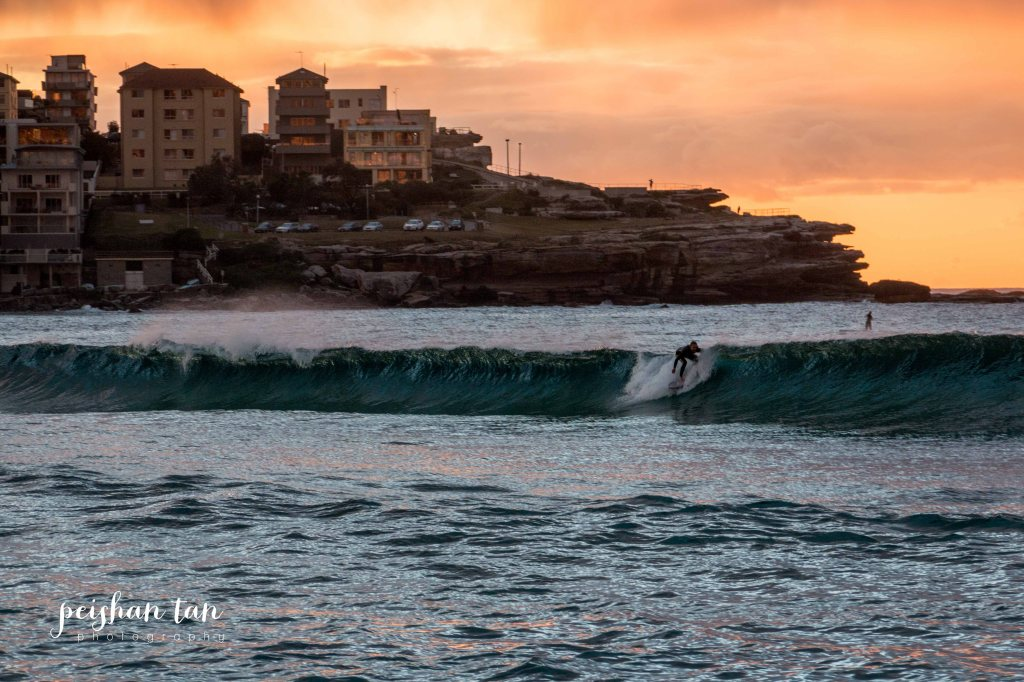June 2015 Bondi to Covelly Sunrise (26 of 67)-1