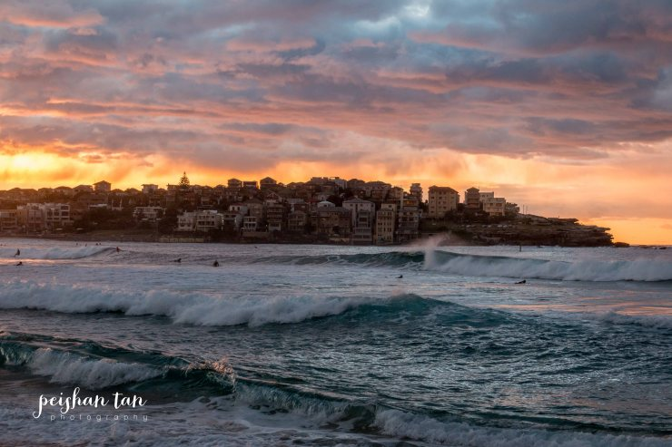 June 2015 Bondi to Covelly Sunrise (30 of 67)-1