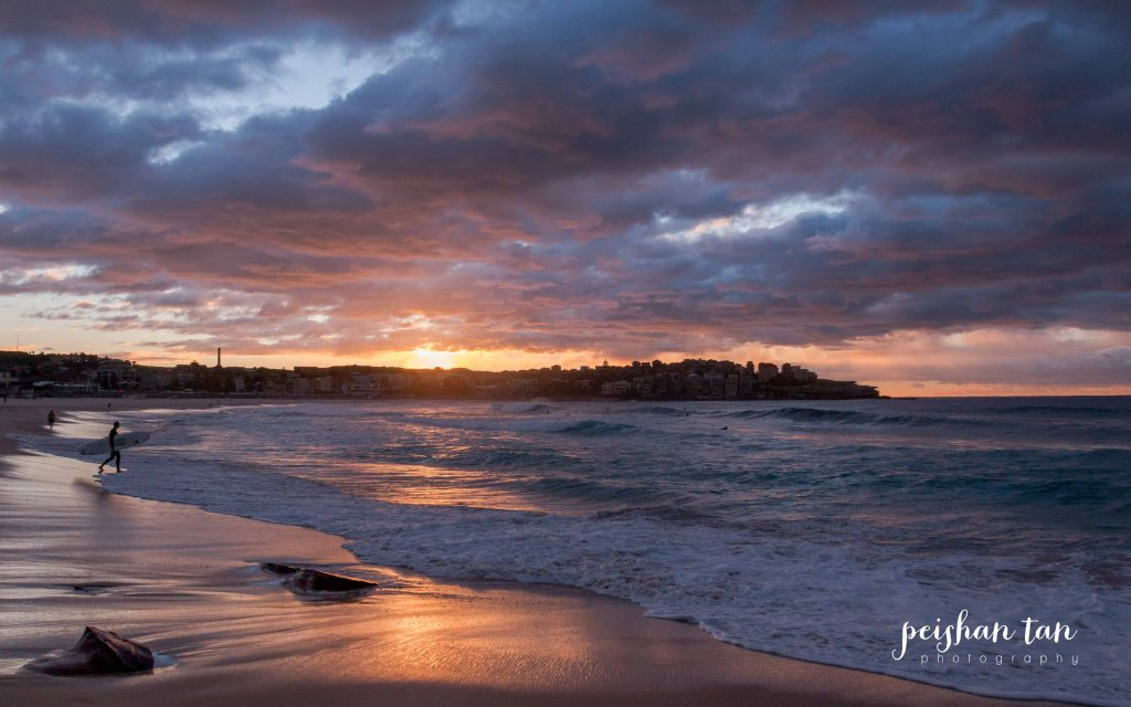 June 2015 Bondi to Covelly Sunrise (39 of 67)-1