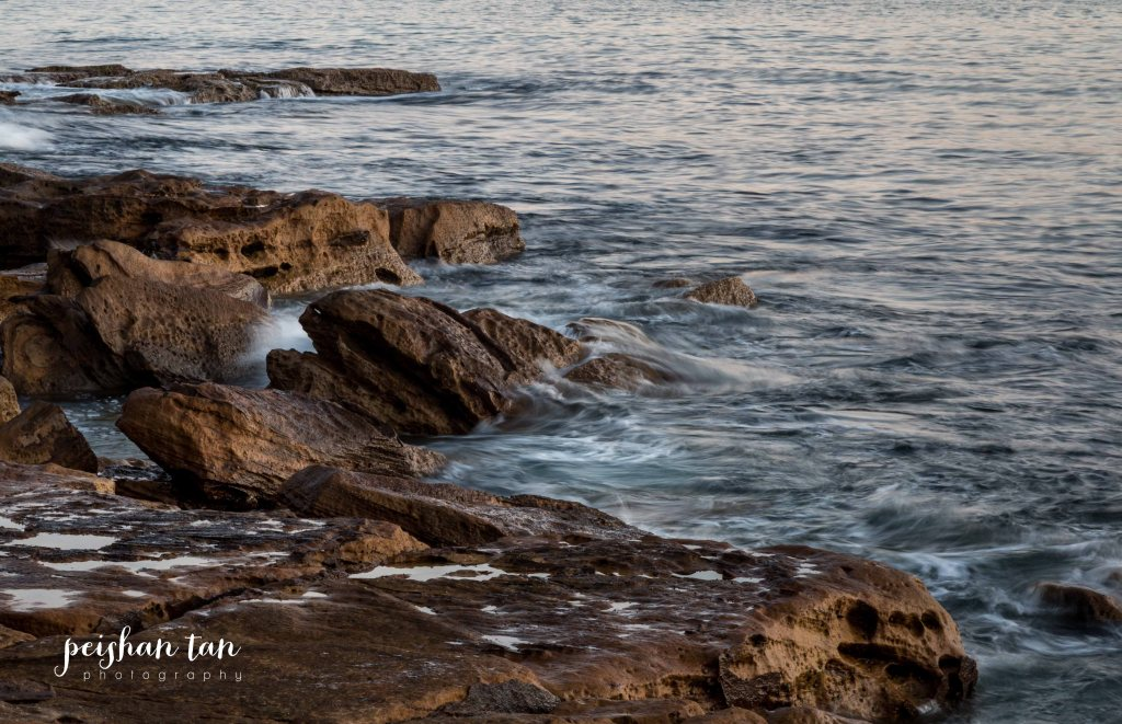 August 2015 Spring Weekend Manly and Muogamarra Reserve (19 of 65)-1