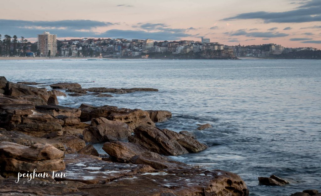 August 2015 Spring Weekend Manly and Muogamarra Reserve (22 of 65)-1