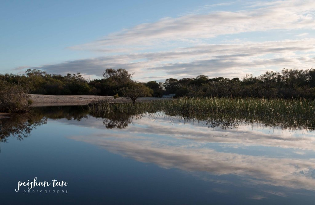 August 2015 Spring Weekend Manly and Muogamarra Reserve (55 of 65)-1