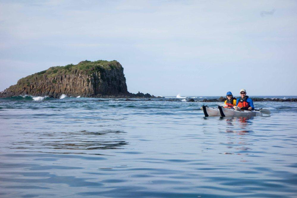 whale watching wollongong - photo#28