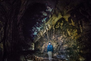 Lithgow Glow Worm Tunnel