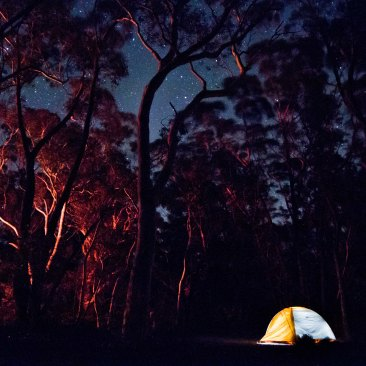 Perrymans Lookdown Camping-5268