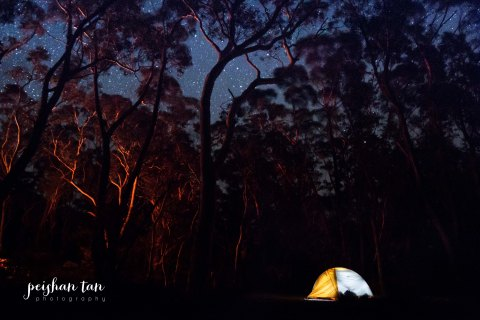 Perrymans Lookdown Camping-5270