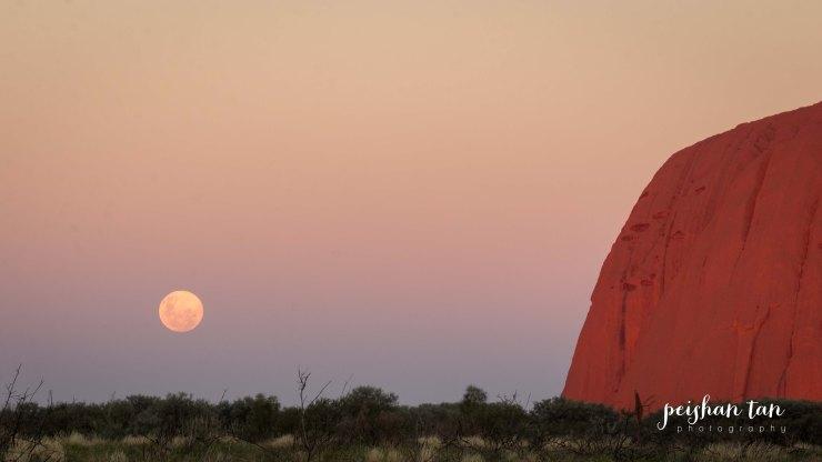 Uluru Outback--4