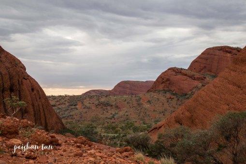 Uluru Outback-4593