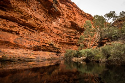 Uluru Outback-4846