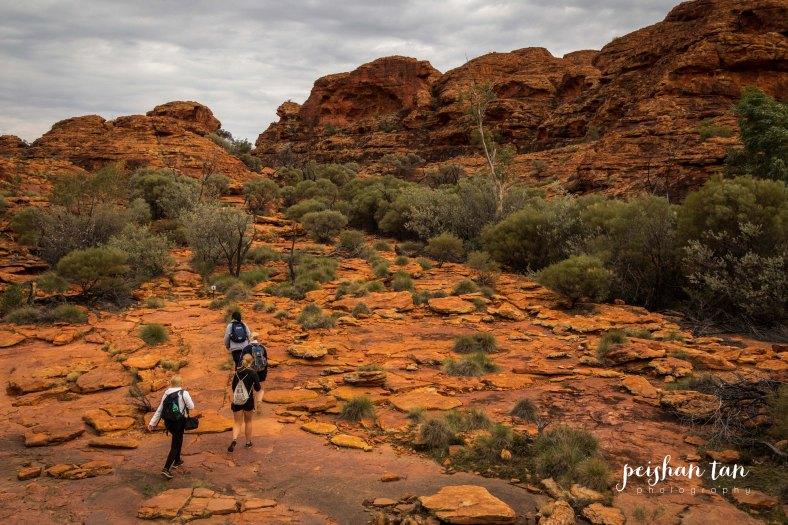 Uluru Outback-4870