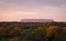 Uluru Outback-5144-2
