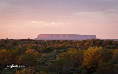 Uluru Outback-5144