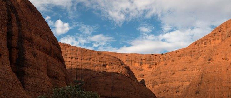 Uluru Outback--6