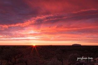 Uluru Outback-