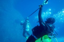 Diving in the Adriatic Sea