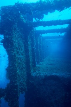 Vassilios Wreck - Adriatic Sea