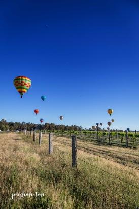 Hunter Valley Ballon Fiesta 2016