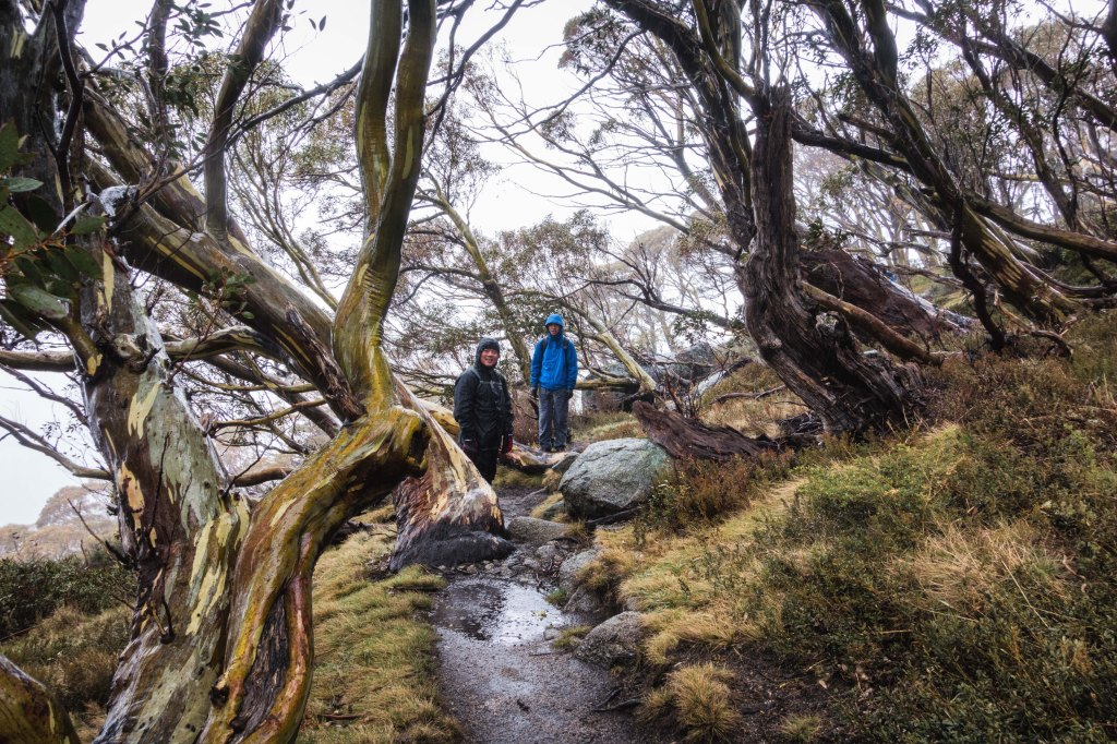 Hiking Mount Kosciuszko