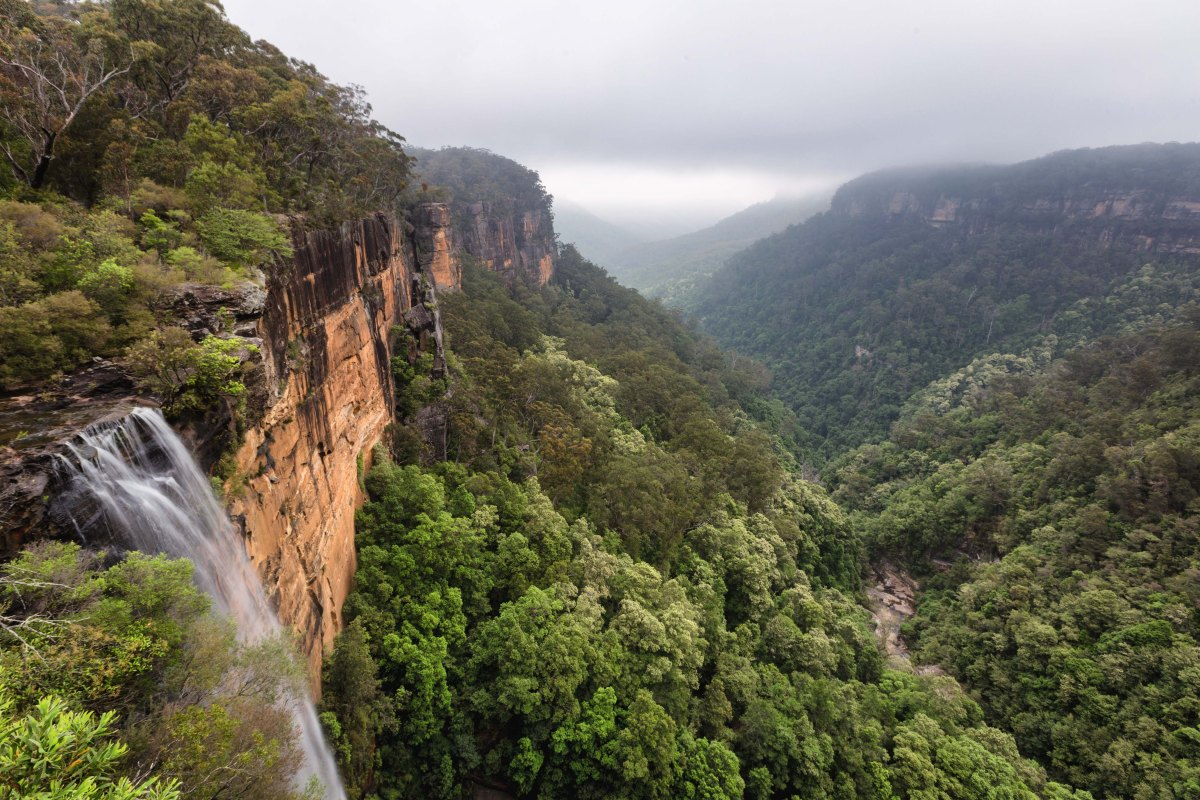 Hiking and Camping in Kangaroo Valley - ptanphoto