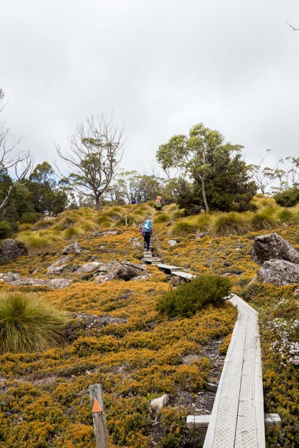 day-2-overland-track9