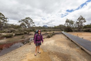 day-6-overland-track2