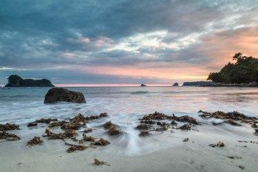 Stingray Beach - Cathedral Cove Coromandel New Zealand