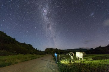 The milky way - Coromandel