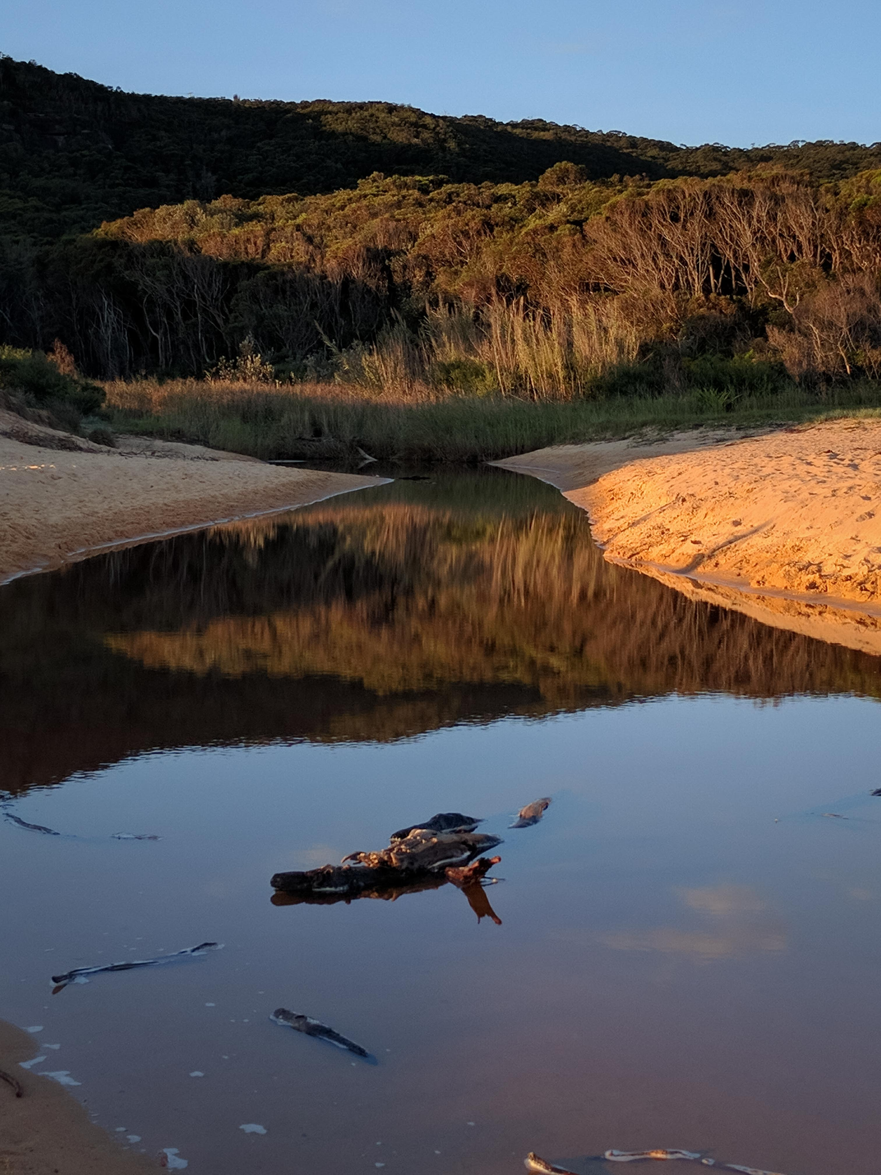 2017_april_bouddi_national_park_2