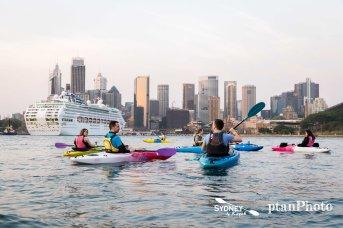 Sydney by Kayak Sunrise Paddle Sep 24