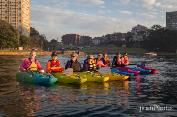 Sydney Harbour Sunrise Kayaking