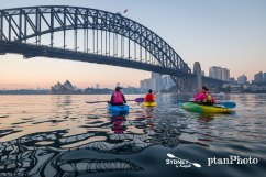 Sydney by Kayaak Sunrise Paddle with ptanPhoto