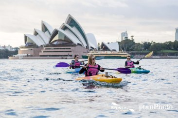 Sydney by Kayak Sunrise Paddle Oct - Nov 177