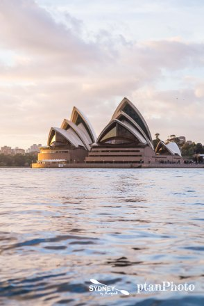 Sydney by Kayak Sunrise Paddle Oct - Nov 179