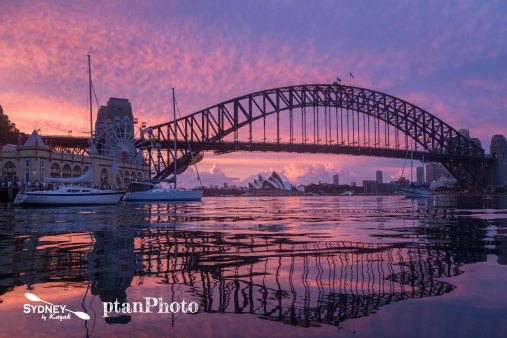 Incredible Sunrise on the Sydney Harbour