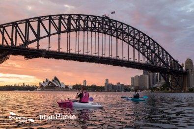 Sydney by Kayak Sunrise Paddle Dec 8 - Max6