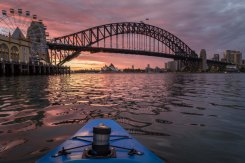 Sydney Harbour Sunrise Paddle - Dec 8 2017