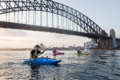 Sunrise Paddle Sydney Harbor 201810