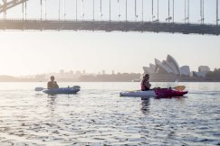 Sunrise Paddle Sydney Harbor 201812