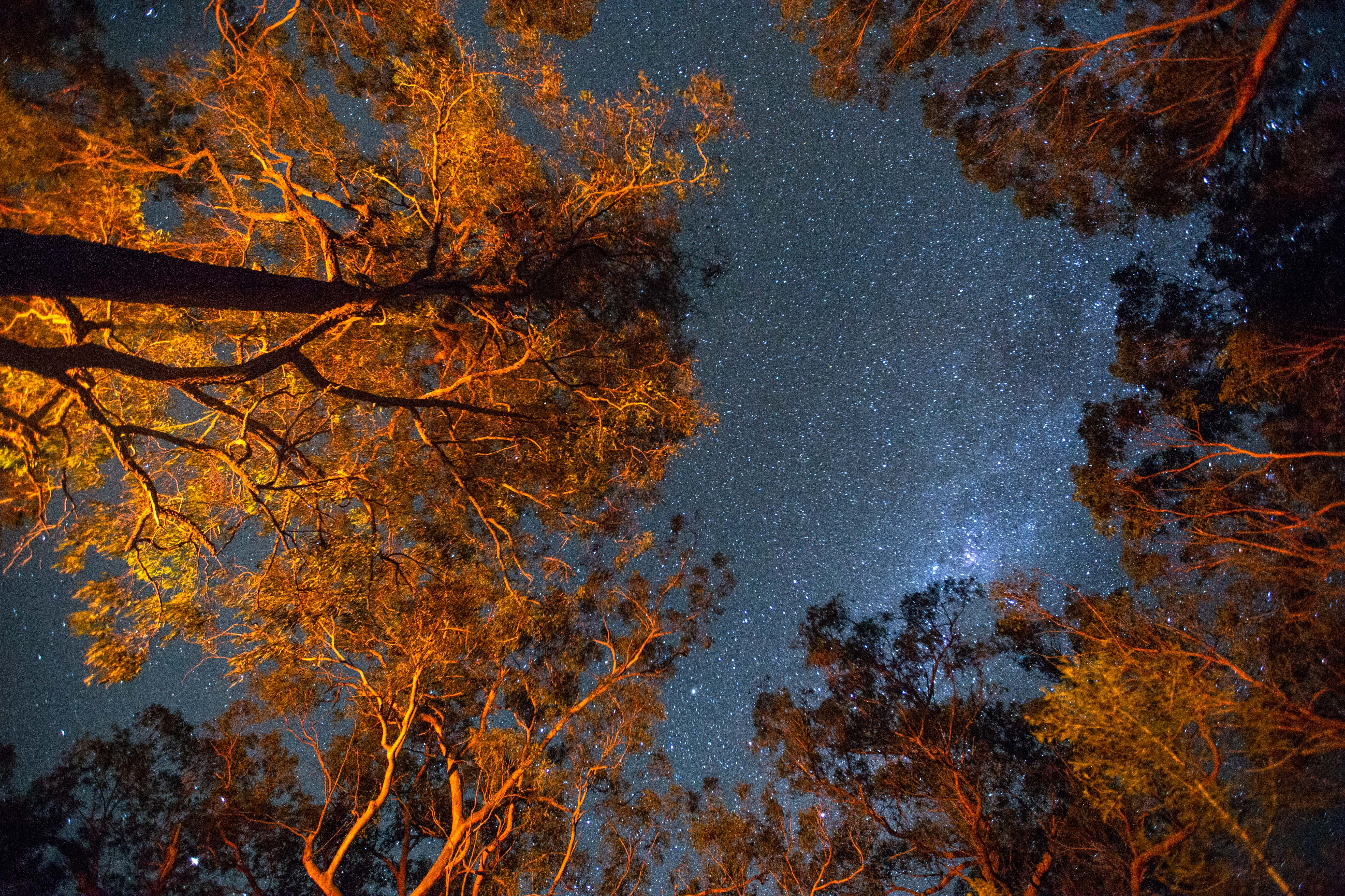 Kangaroo Valley Kayak and Camping Weekend22.jpg