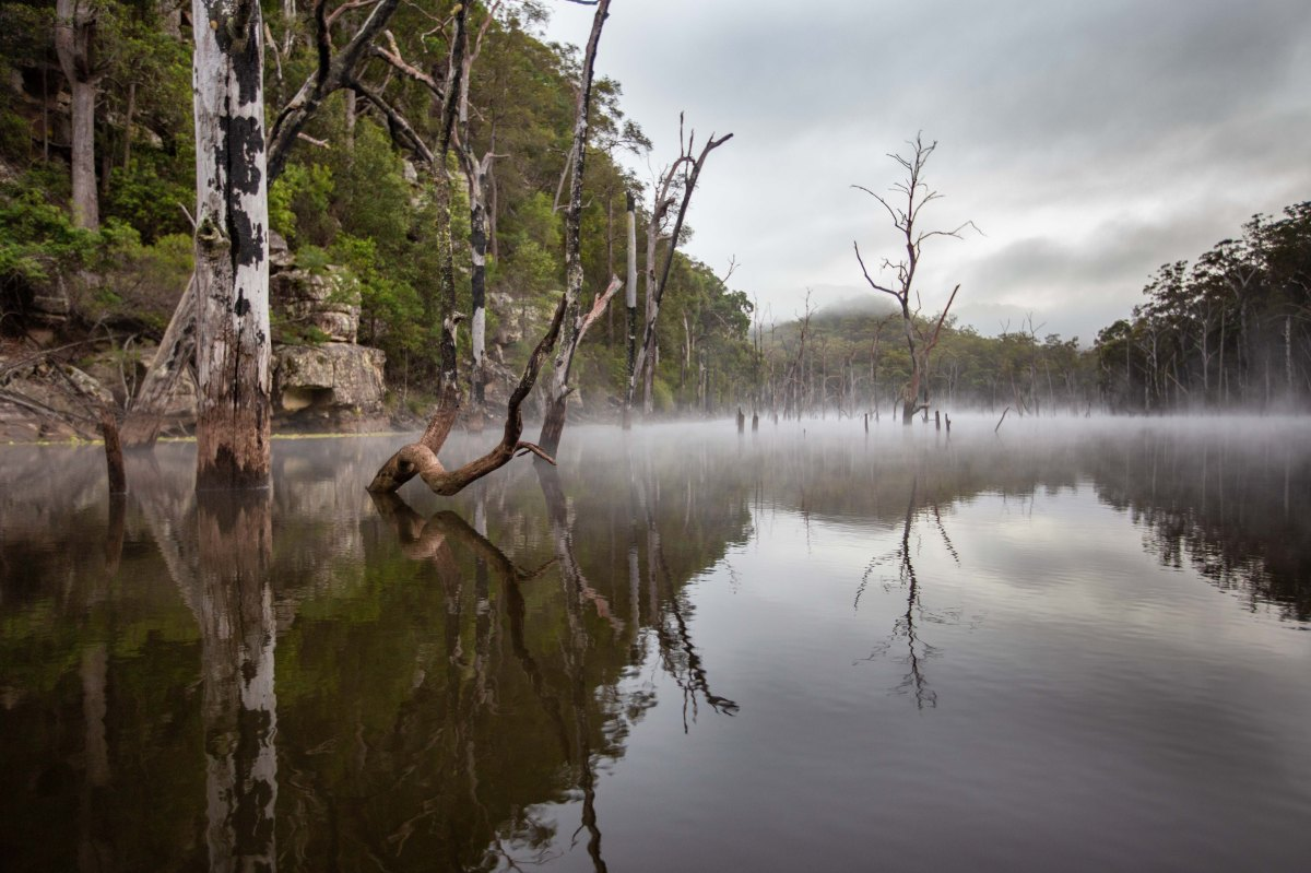 Kangaroo Valley Kayak and Camping Weekend65.jpg