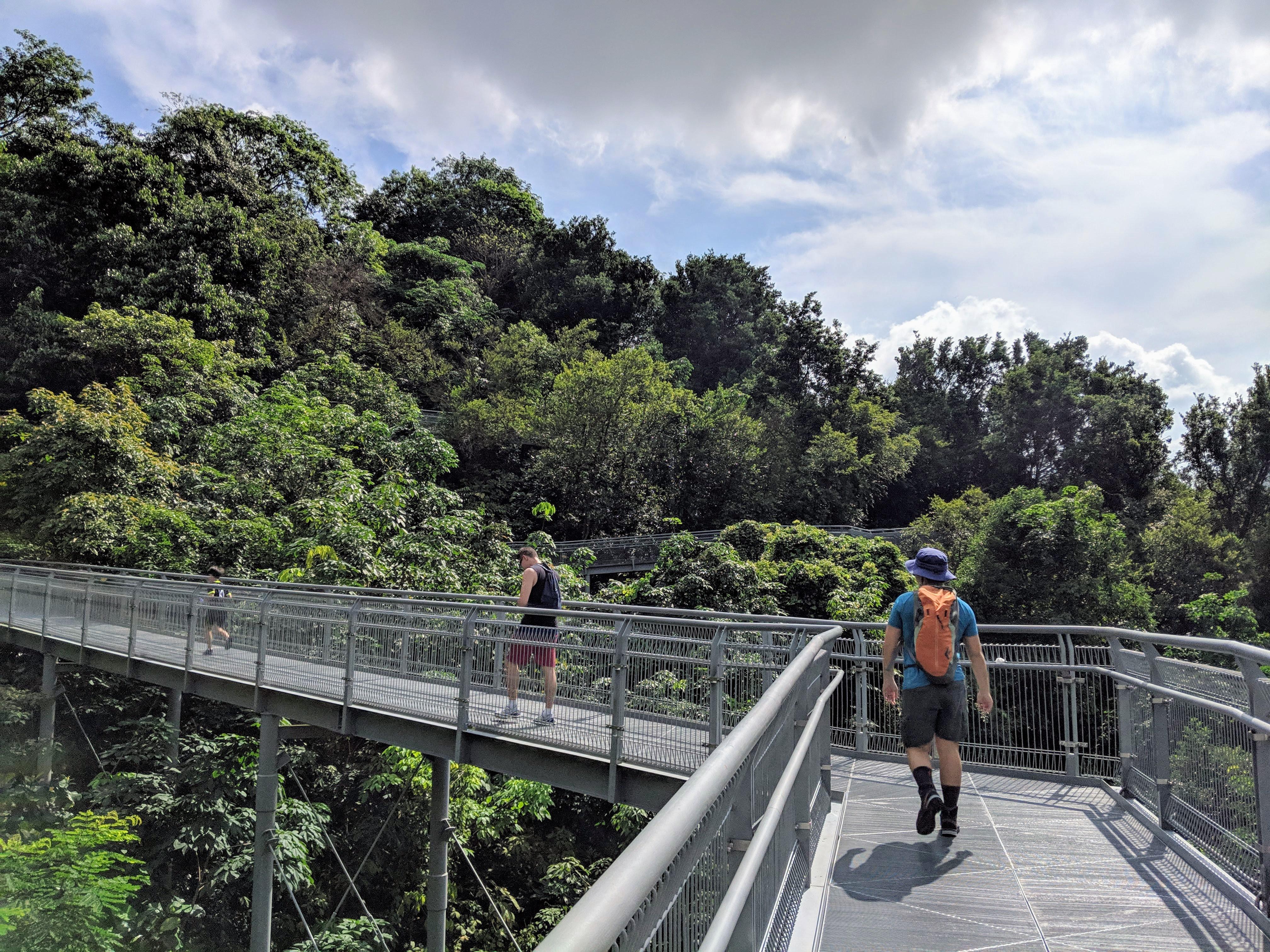 Southern Ridges Walk2